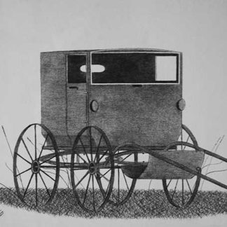 An old-fashioned unhitched buggy