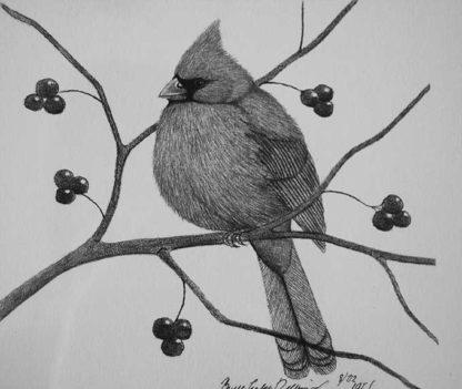 A cardinal on a tree limb